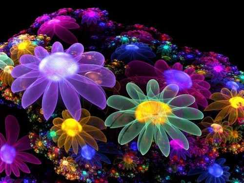 Bright Colors images Colourful Flowers wallpaper and background