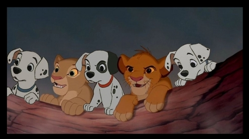 Dalmatian Puppies with Simba and Nala