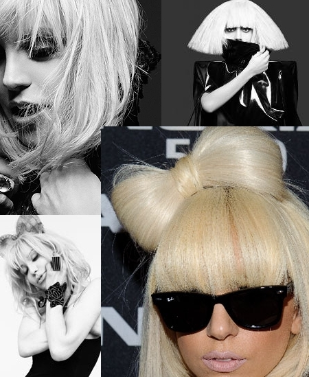 i love lady gaga