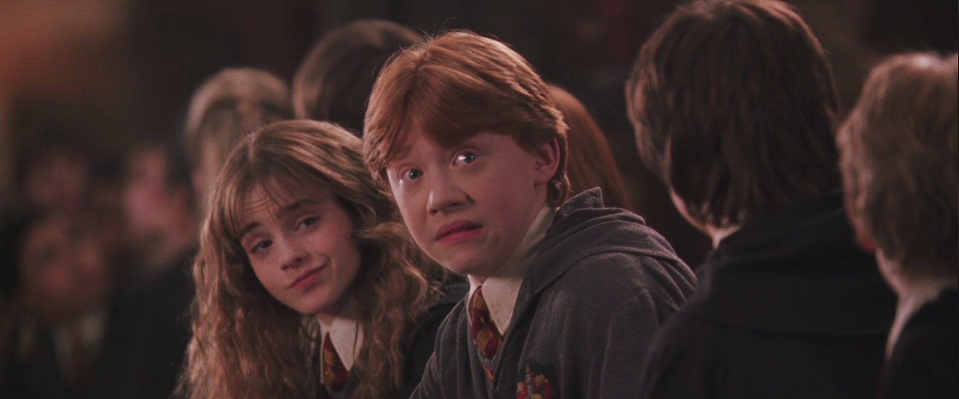 the summary of harry potter and the chamber of secrets Harry potter and the chamber of secrets follows harry'ssecond year at hogwarts this book introduces the idea of bloodpurity, one of the main plots of the series.