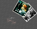paramore - Hayley LOVE IS THE MOVEMENT wallpaper