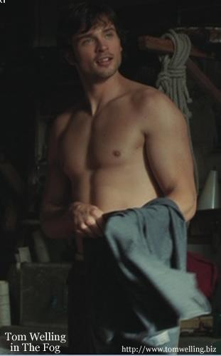 Tom Welling Hintergrund possibly containing a stück, hunk and skin called Hot Tom!