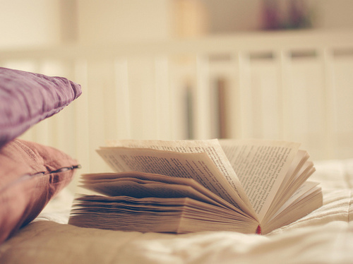I ♥ lectura