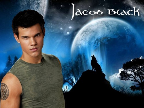 Twilight Series wallpaper probably with a fountain called Jacob Black - Wolf