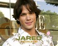 Jared Padalecki wallpaper - jared-padalecki wallpaper