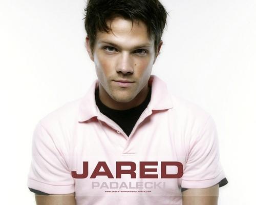 Jared Padalecki wolpeyper