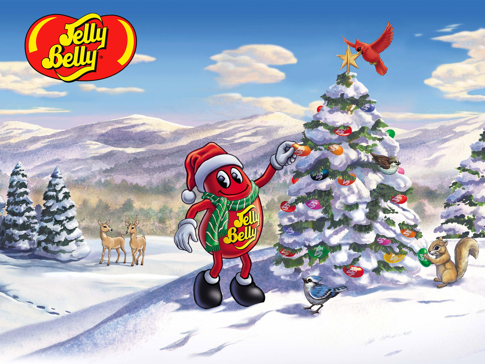 jelly belly images jelly belly winter wallpaper hd