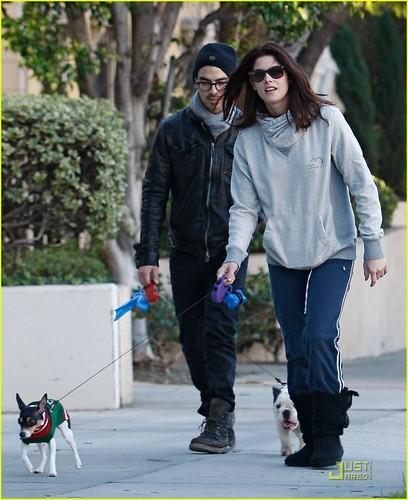 Joe Jonas & Ashley Greene: Dog Walker Duo (November 26)