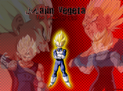 Majin Vegeta - vegeta Photo