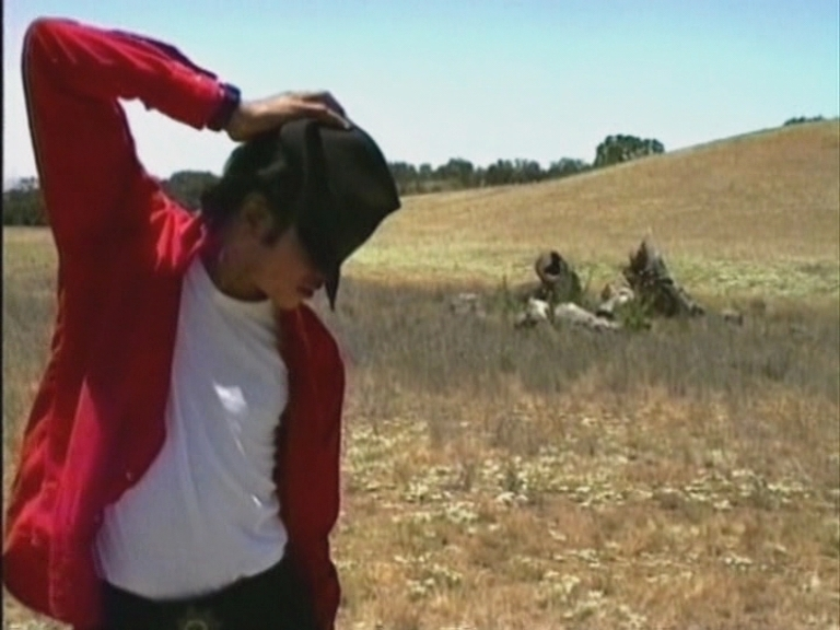 Michael Jackson In neverland