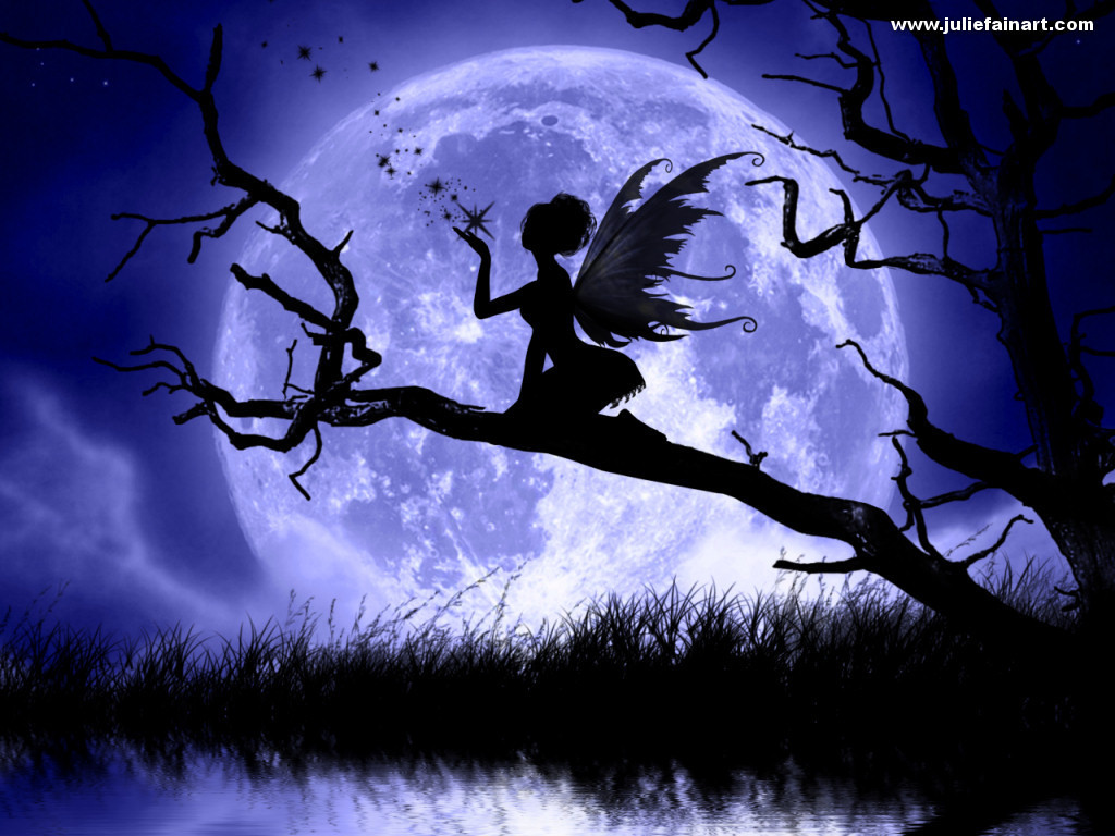 fairies images moonlight fairy hd wallpaper and background