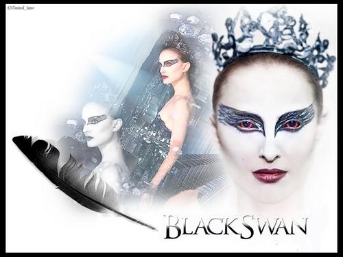 Natalie - Black 白鳥, スワン