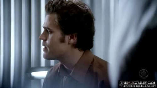 Paul in cold case