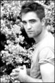 Rob In Black & White - robert-pattinson photo
