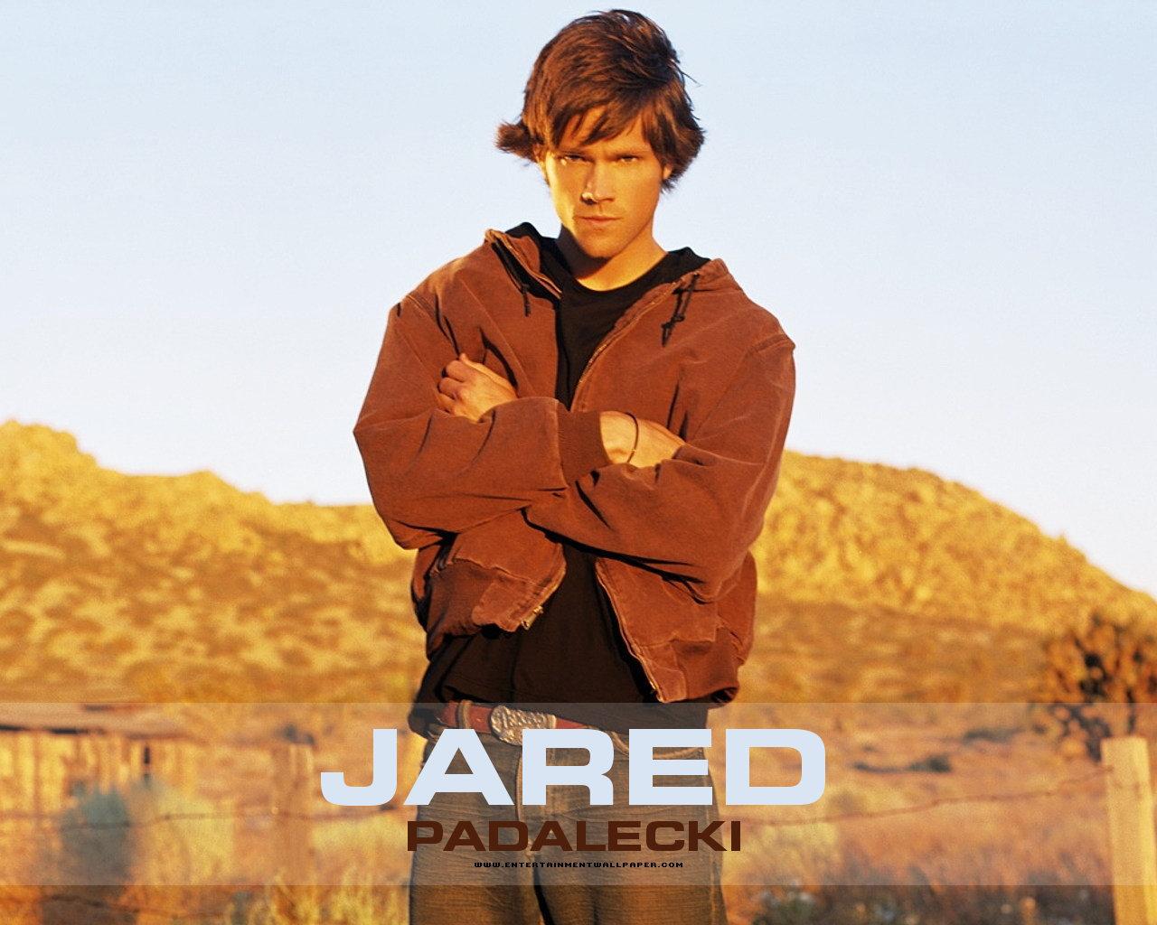 Jared Padalecki Wallpapers