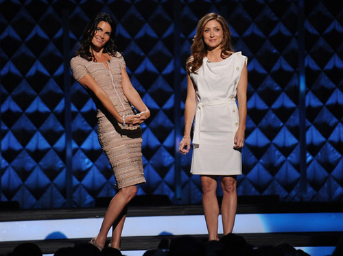 Sasha Alexander wallpaper containing a chainlink fence entitled Sasha @ 2010 TEN Upfront