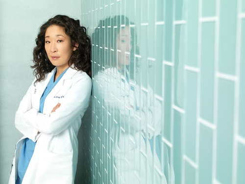 Grey's Anatomy wallpaper called Season 7- Cast Promo photos