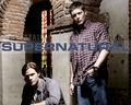 Supernatural wallpapers - supernatural-characters wallpaper