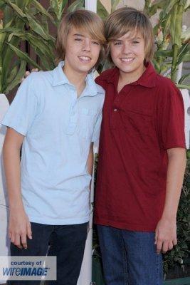 The twin twee