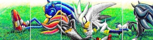 A hedgehog rest