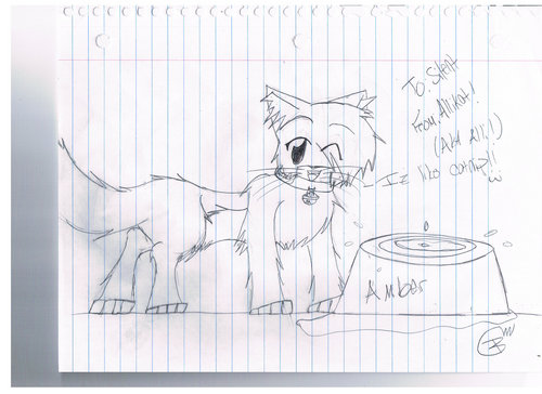 Make Your Own Warrior Cat! hình nền probably containing a sign entitled Amber