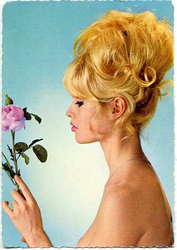 Brigitte Bardot hình nền containing a bouquet titled BB