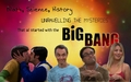 Big Bang Theory Cast fondo de pantalla