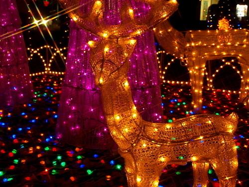 Bright giáng sinh Lights