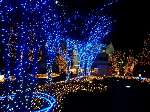 Bright Colors Wallpaper Containing A Fountain Entitled Christmas Lights