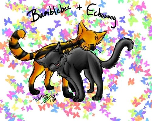 Bumblebee+Echosong