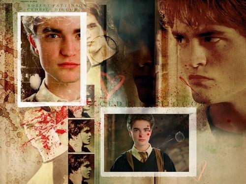 Cedric Diggory achtergronden