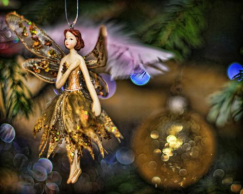 pasko Fairy