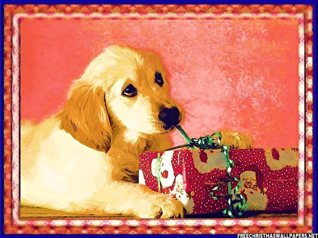 christmas puppy wallpaper - photo #27