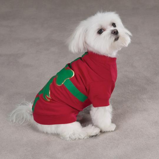 Teddybear64 images Christmas dogs wallpaper and background photos ...