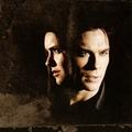 Damon/Elena ღ