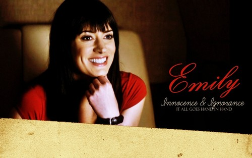 Criminal Minds Girls wallpaper containing a packing box titled Emily Prentiss