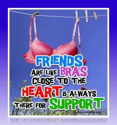 friends are like bras