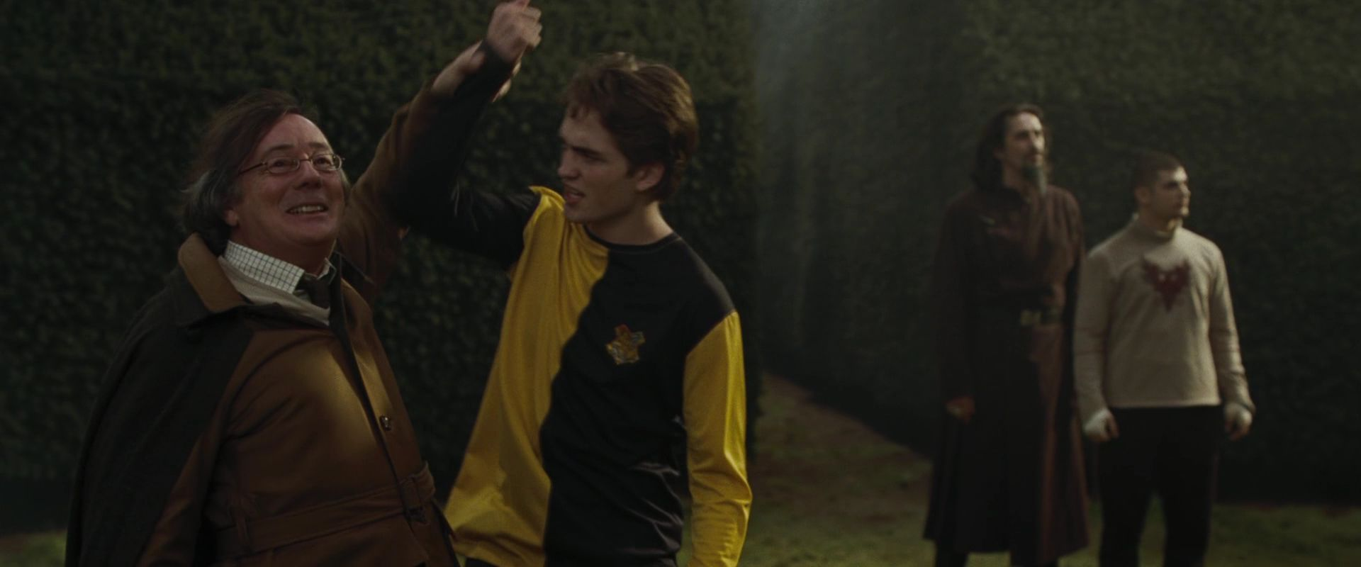 Harry Potter And The Goblet Of Fire Cedric Diggory Death Scene Goblet of Fire Cedric ...
