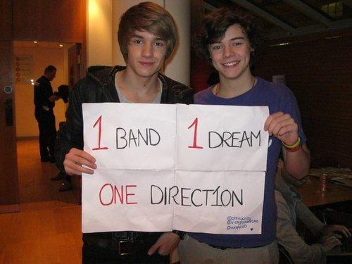 Goregous Liam & Flirty Harry (1 Band 1 Dream 1 Direction Yeah) :) x