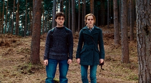 Harry and Hermione wallpaper containing a sitka spruce, a ponderosa, and a douglas fir entitled Harmony <3