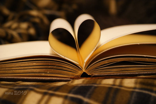 Amore is in the libri