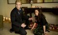 New Moon - the-twilight-saga-vampires-wolves photo