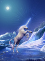 On Ice - unicorns photo