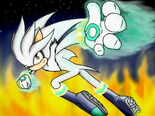 Silver the hedgehog hardcore