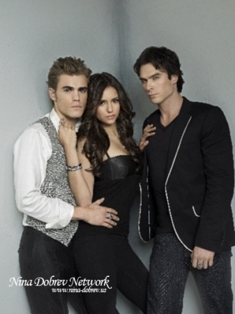 http://images4.fanpop.com/image/photos/17300000/TDV-small-the-vampire-diaries-17369014-337-450.jpg