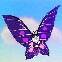 Schmetterling Das Letzte Einhorn