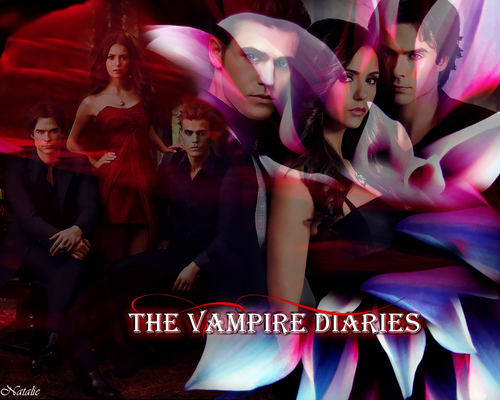 http://images4.fanpop.com/image/photos/17300000/The-Vampire-Diaries-the-vampire-diaries-17377098-500-400.jpg