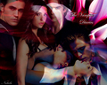 the-vampire-diaries - The Vampire Diaries (version 2) wallpaper