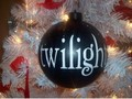 Twas the night before Twilight...... - twilight-series photo