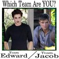 Which team are you on? Team Edward or Team Jacob? haha Edward!!  - twilight-series photo